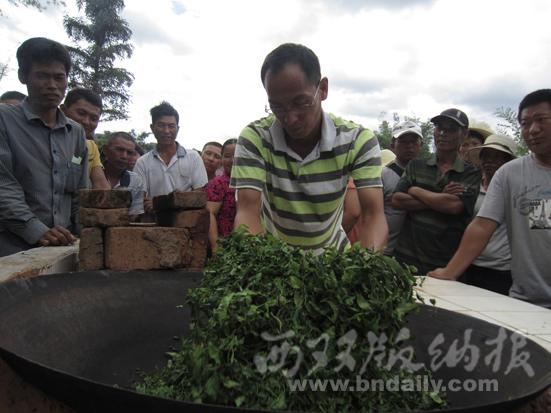 培训传统手工炒茶技术