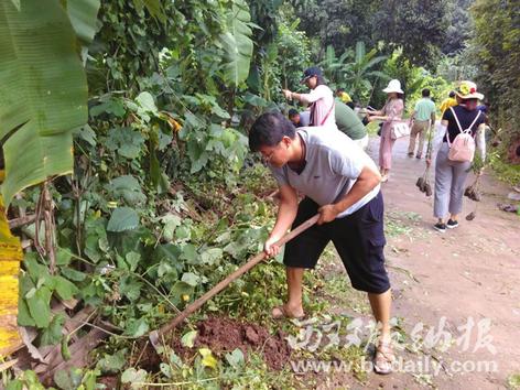 共种植降香黄檀和印度紫檀155株