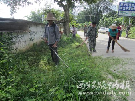 对道路两旁的杂草进行清除