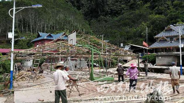 勐腊镇村民搭建黑木耳大棚