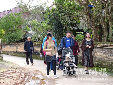 勐罕镇曼景村小组吸引众多游客前来观光游览