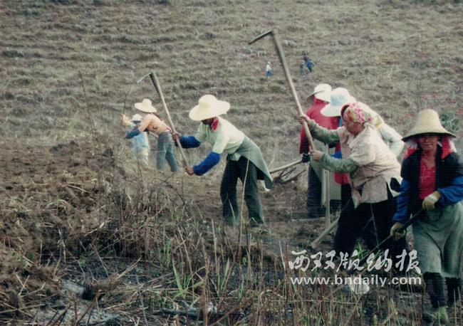 C0712012-03b-刘大江